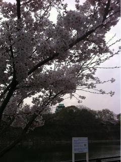 久世日記-IMG_9952.jpg